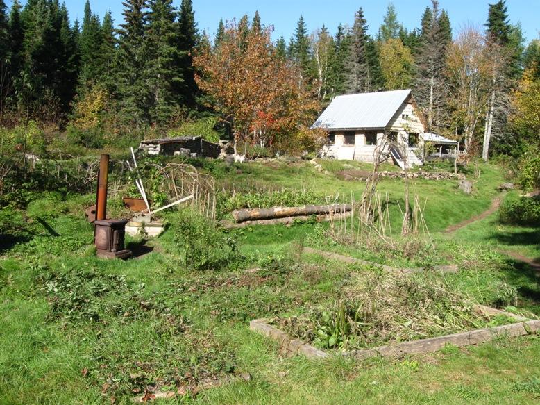 Acreage With Cabin For Sale Cape Breton Farm Nova Scotia